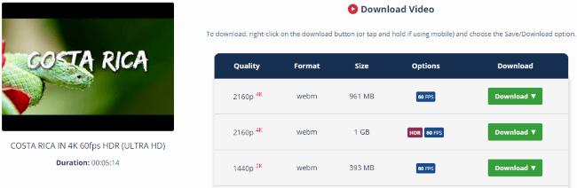 BONUS: Youtube to MP4 60FPS Online Converter –4K Downloader