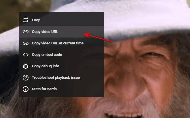 Long video